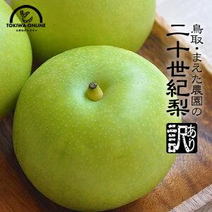 20世紀梨 訳あり 二十世紀梨 鳥取 送料無料 10kg 果物 鳥取県 梨 なし ナシ 敬老の日