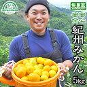 みかん 送料無料 5kg 無農薬 和歌山産 ノーワックス 農園直送 紀州みかん 果物 有機栽培 自然栽培 産地直送 農薬未使…
