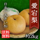 あたご梨 愛宕梨 お歳暮 進物 送料無料 2kg 贈り物 ギフト プレゼント 内祝い 快気祝 御見舞 御供 三重 大きい梨 果物…