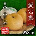 あたご梨 愛宕梨 お歳暮 進物 送料無料 3kg 贈り物 ギフト プレゼント 内祝い 快気祝 御見舞 御供 三重 大きい梨 果物…