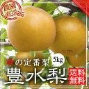 【送料無料】豊水梨 5kg 【贈答】【ギフト】 豊水梨  豊水5 和梨 なし ナシ くだもの 通販 三重県 工藤果樹園 