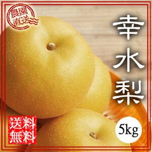 幸水梨 5kg 送料無料 贈答 ギフト 幸水 夏の梨 和梨 なし ナシ くだもの 三重県 工藤果樹園