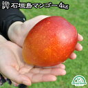 マンゴー 訳あり 沖縄 送料無料 4kg 石垣島産 農園直送 石垣島マンゴー わけあり 沖縄マンゴー 完熟マンゴー フルーツ…