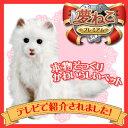 日本総販売元 セガトイズ 夢ねこプレミアム 子供からお年寄りまで皆に愛される 夢猫 シリーズ!
