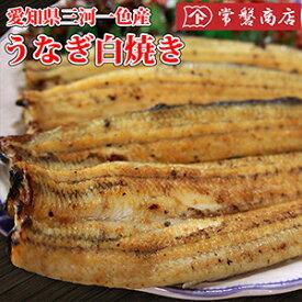 うなぎ白焼き(大) 愛知県三河一色産鰻|鰻、愛知県産ウナギしらやき
