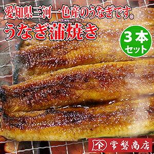 愛知県三河一色産のうなぎ蒲焼き