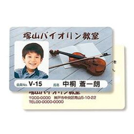 サンワサプライ JP-ID03-100 IDカード 穴なし 100シート