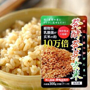 発酵発芽玄米 300g 国産 乳酸菌 10万倍 送料無料