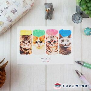 【メール便対応可】ポストカード『SYARENEKO×GLASS』猫/ねこ/ハガキ/絵葉書/メッセージ/文房具/ステーショナリー/かわいい/おもしろ/メガネ/写真/ギフト/贈り物/動物/とことこサーカス/てまりの