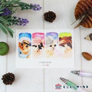 【メール便対応可】ポストカード『SYARENEKO×CAP』猫/ねこ/ハガキ/絵葉書/メッセージ/文房具/ステーショナリー/かわいい/おもしろ/帽子/写真/ギフト/贈り物/動物/とことこサーカス/てまりのお