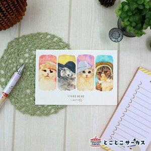 【メール便対応可】ポストカード『SYARENEKO×HAT』猫/ねこ/ハガキ/絵葉書/メッセージ/文房具/ステーショナリー/かわいい/おもしろ/帽子/写真/ギフト/贈り物/動物/とことこサーカス/てまりのお