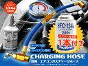 R134a エアコン 簡易 ガスチャージホースセット エアコンガス200g付き