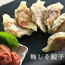 梅しそ【10個】パンパン餃子 ぎょうざ ギョウザ 皮 うすめ 生餃子 にんにくなし 総菜 パーティ 冷凍 国産素材 中華 …