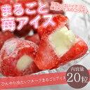 送料無料 まるごと苺アイス 20粒 ※練乳いちごアイス、アイス、イチゴ、あいす【RCP】