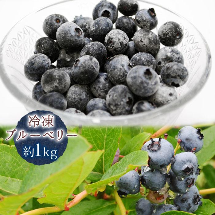 送料無料 冷凍ブルーベリー 約1kg ※ブルーベリー、山形県産、フルーツ、果物