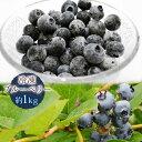 送料無料 冷凍ブルーベリー 約1kg ブルーベリー、山形県産、フルーツ、果物