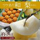 訳あり和梨 5kg (10-22玉前後)※梨、和梨、なし、ナシ、数量限定、送料無料