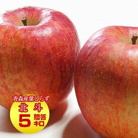 送料無料 葉とらず 北斗【贈答用】約5kg(14〜18個) ※青森産、直送、りんご、リンゴ、林檎