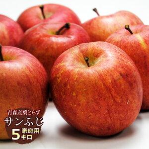 送料無料 葉とらず サンふじ【家庭用】約5kg(14〜18個) ※青森産、直送、りんご、リンゴ、林檎、サンふじ