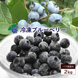 冷凍ブルーベリー 約2kg 大容量 ブルーベリー 国産 山形県産 ベリー 冷凍果実 フルーツ 果物 くだもの 送料無料