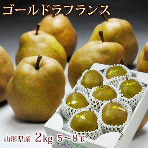 ゴールドラフランス2kg箱(5〜8玉) 山県産,洋梨,ようなし,ラフランス,送料無料