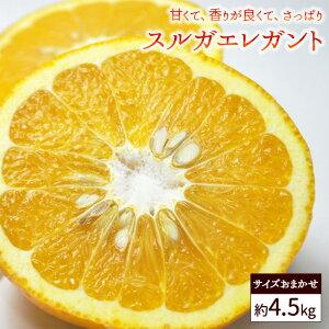 送料無料 家庭用 スルガエレガント 約4.5kg バラ詰め ※サイズおまかせ、甘夏、アマナツ、柑橘、