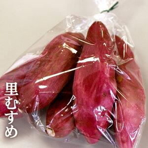 徳島特産 なると金時 里むすめ お試し袋詰め約1kg(徳島県里浦産鳴門金時)
