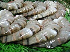 海水養殖ブラックタイガー(規格:21/25) 約20g/尾 約10尾入り×3パック