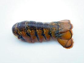 ハイプレッシャー オマール テール一尾 生 約85g(3オンス)