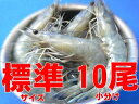 天使の海老 標準サイズ10尾小分け(規格:30/40)
