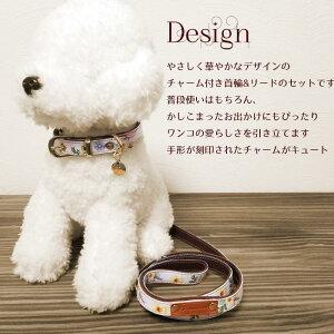 首輪とリードセット小型犬
