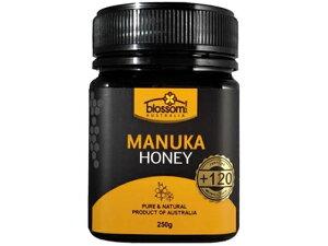 送料無料 ブロッサムヘルス マヌカハニー+120 250g MGO120 はちみつ ハチミツ 蜂蜜