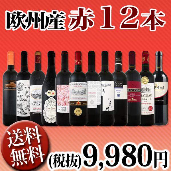【送料無料】第83弾!超特大感謝!≪スタッフ厳選≫の激得赤ワイン12本9,980円(税別)セット!