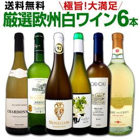 ワイン 【送料無料】第117弾!当店厳選!これぞ極旨辛口白ワイン!『白ワインを存分に楽しむ!』味わい深いスーパー・セレクト白6本セット