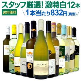 白ワイン セット 【送料無料】第112弾!超特大感謝!≪スタッフ厳選≫の激得白ワインセット 12本!