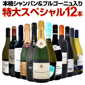 【送料無料】第4弾!本格シャンパン&ブルゴーニュ入り!特大スペシャル12本セット! ワイン ワインセット セット 赤ワインセット 赤ワイン 白ワインセット 白ワイン スパークリングワインセット 飲み比べ ギフト プレゼント 辛口 750ml
