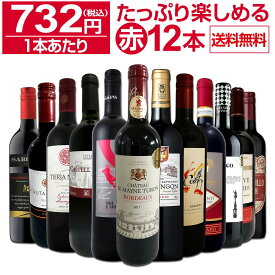 【送料無料】第17弾!1本あたり732円(税込)!!採算度外視の大感謝!厳選赤ワイン12本セット