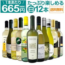 【送料無料】第14弾!1本あたり665円(税別)!!採算度外視の大感謝!厳選白ワイン12本セット