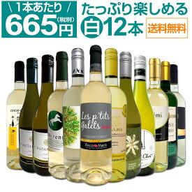 【送料無料】第15弾!1本あたり665円(税別)!!採算度外視の大感謝!厳選白ワイン12本セット