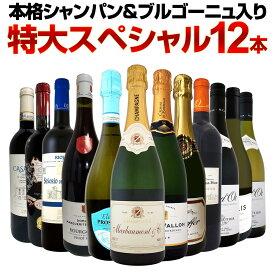 【送料無料】第8弾!本格シャンパン&ブルゴーニュ入り!特大スペシャル12本セット! ワイン ワインセット セット 赤ワインセット 赤ワイン 白ワインセット 白ワイン スパークリングワインセット 飲み比べ ギフト プレゼント 辛口 750ml