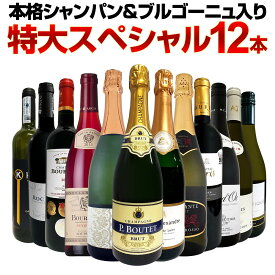 【送料無料】第16弾!本格シャンパン&ブルゴーニュ入り!特大スペシャル12本セット! ワイン ワインセット セット 赤ワインセット 赤ワイン 白ワインセット 白ワイン スパークリングワインセット 飲み比べ ギフト プレゼント 辛口 750ml