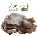 プルロット(ヒラタケ) フレッシュ フランス産きのこ<フランス産>【250g】【冷蔵品】