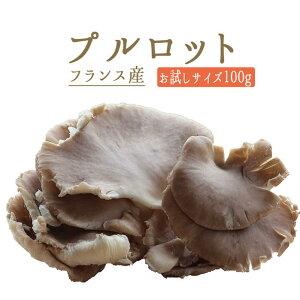 ◆プルロット(ヒラタケ) フレッシュ フランス産きのこ<フランス産>【お試しサイズ 100g】【冷蔵品】