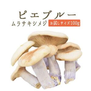 ◆ピエブルー(紫シメジ)<フランス産>【お試しサイズ 100g】【冷蔵品】