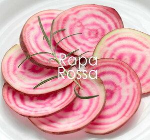 イタリア野菜 ラーパロッサ(ヴェネトかぶ)<イタリア産>【約1個170-250g】【¥300/100g当たり再計算】【冷蔵品】