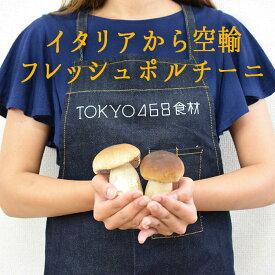 【季節限定】ポルチーニ フレッシュ <イタリア産>porcini【100g】【100g/\1800再計算】【冷蔵品】