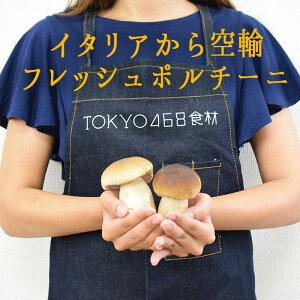 【季節限定】ポルチーニ フレッシュ <イタリア産>porcini【100g】【100g/¥1800再計算】【冷蔵品】
