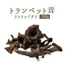 トランペット 黒ラッパ茸 (きのこ)フレッシュ<フランス産>【250g】【冷蔵品】