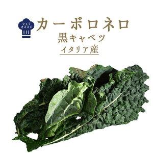 カーボロ ネロ 黒キャベツ 葉キャベツ イタリア野菜<イタリア>【500g】