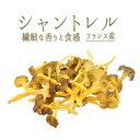 シャントレル フレッシュ <フランス産>【約250g】【冷蔵品】